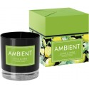 Świeca zapachowa w szkle AMBIENT citrus&herbs