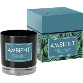 Świeca zapachowa w szkle AMBIENT tropical island