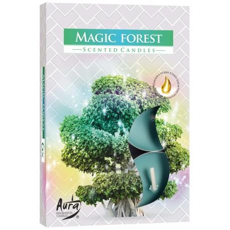 Podgrzewacze zapachowe Zaczarowany las