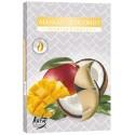 Podgrzewacze zapachowe Mango - Kokos 6 szt.
