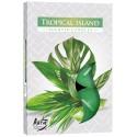Podgrzewacze zapachowe Tropikalna Wyspa