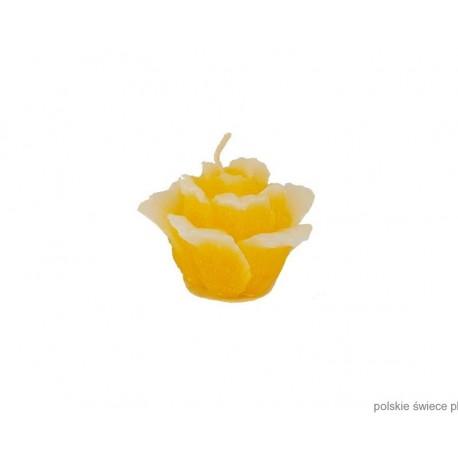 Świeca pływająca róża mini